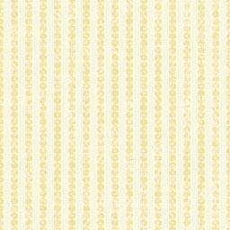 stripeAN1